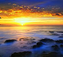 A joyful sunrise by Ray Yang