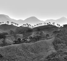 Maua, Brazil by Quasebart