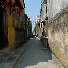 Alley in Hoi An by Michelle Dewis