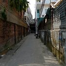Alley in Hue by Michelle Dewis