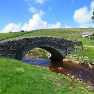 The Yorkshire Dales: The Bridge at Ravenseat Farm by Rob Parsons