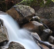 Eurobin Creek, Mt Buffalo by MissyD