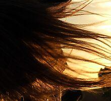 Flyaway chestnut veil by kurrawinya