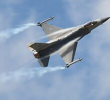 F16 Fighting Falcon by Shane Ransom