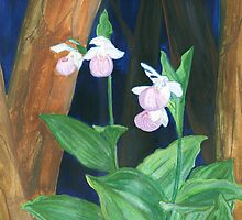 lady slippers by Leeanne Middleton