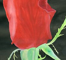 red rose by Leeanne Middleton
