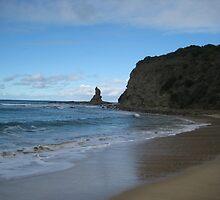 Eagles Nest Beach - Bass Coast by dan62442
