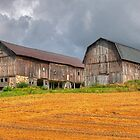 Old Barns of Canandaigua by Monte Morton