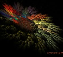 CACTUS AT NIGHT by Jupiter Queen