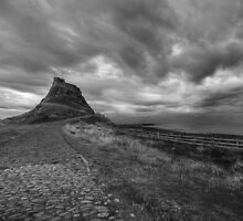 Lindisfarne Castle, Holy Island by dlsmith