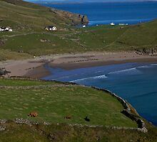 Traloar Beach, Muckross Head, Donegal by George Row