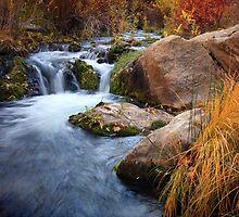 Autumn Cascade by David Kocherhans