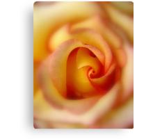 Sunny Hill Rose #2 Canvas Print
