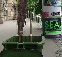 Street Sweeper by Andi Hagedorn