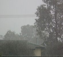 Heavy rain by Bernie Stronner