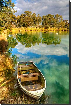 Reflections at Nuriootpa, Barossa Valley by Elana Bailey