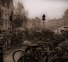 Oxford Bikes by Karen Martin