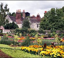 Southover Gardens - Lewes, East Sussex by Jazzdenski