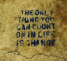 Concrete Wisdom by Wendy Brusca