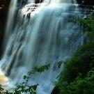 Brandywine Falls--Sagamore Hills, Ohio by Melody Ricketts