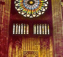 Strasbourg Cathedral Rose Window by David Davies