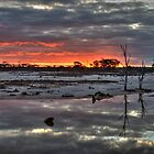 Saline Sunset by Melissa Drummond