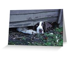 Where The Grass Is Greener Greeting Card