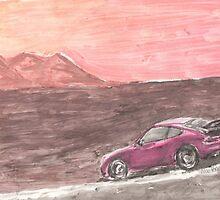 Desert Autobahn by Nikki Portanova