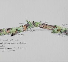 Small Branch with Lichen by Geraldine M Leahy