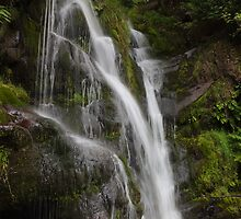 Posforth Gill, Valley Of Desolation. by Nick Atkin