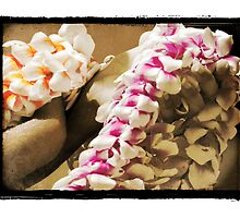 Hands of Welcome - Hawaiian Lei Greeting by Ramon Vrielink