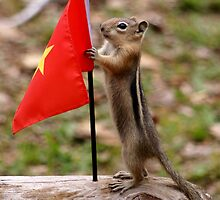 Baby Chip With the Flag of Vietnam by Betsy  Seeton