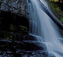 Lilydale Falls by Kylie  Sheahen