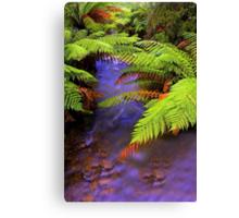 """Ferns~Creek"" Canvas Print"