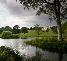 View of Cusworth Hall from the lake by Theresa Elvin
