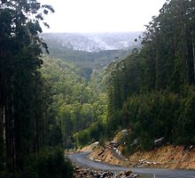 Road to Mt. Baw Baw by Chris Chalk