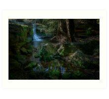 A Little Creek With A Bit of a Waterfall Art Print