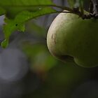 green apple by allisondegeorge