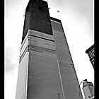 World Trade Center 1971---  a Plane Flew Overhead by Rick Gold