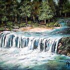 River Falls by Pamela Plante