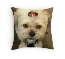 Meet Toots.... Throw Pillow