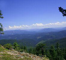 Umpqua National Forest by SKNickel