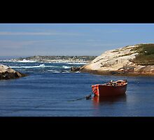Peggys Cove by Dan Snyder