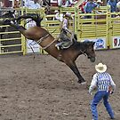 Saddle Bronc 5 Pikes Peak or Bust Rodeo by hedgie6