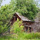 Dry Fork Homestead 2 by Kim Barton