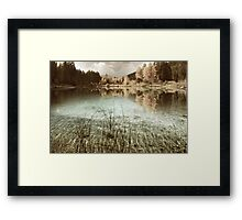 Purity sepia Framed Print