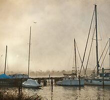 Yachts in Fog, Franklin Tasmania by Chris Cobern