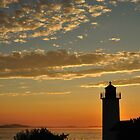 Annisquam Evening Light by Kamalyn