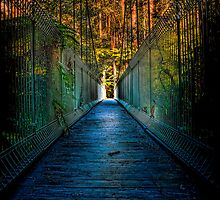 Bulga Bridge #1 by Jason Green