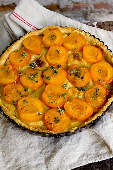Apricot Tart by chezus
